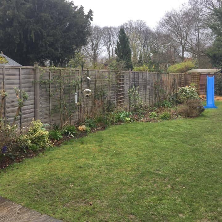 Berkshire garden Spring gardening plants fence lawn