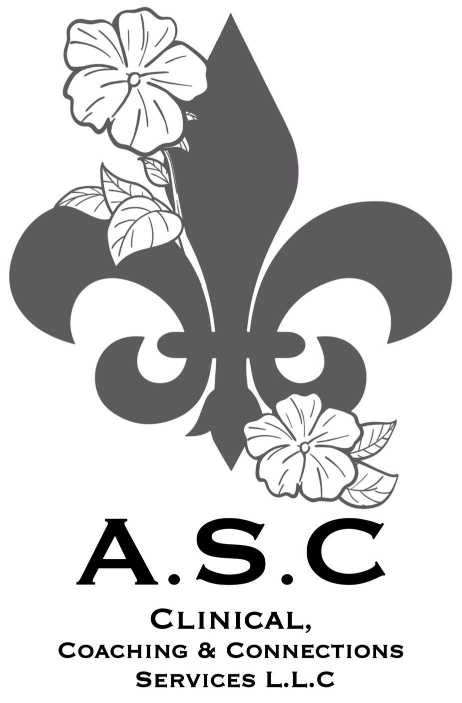 ASC Clinical, Coaching & Connections Services LLC