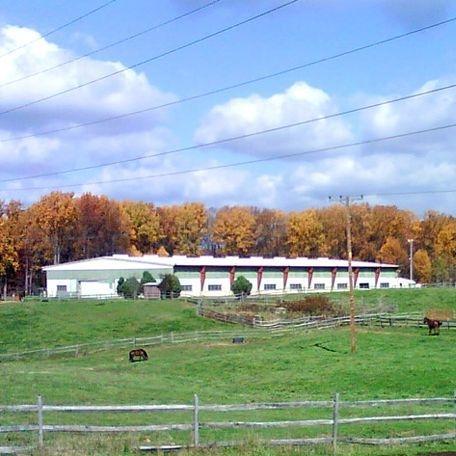 Potomac Horse Center Large Show Ring
