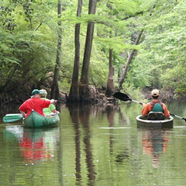 bayou, saline, Natchitoches, canoe, kayak, paddling, fishing, scenic, wildlife