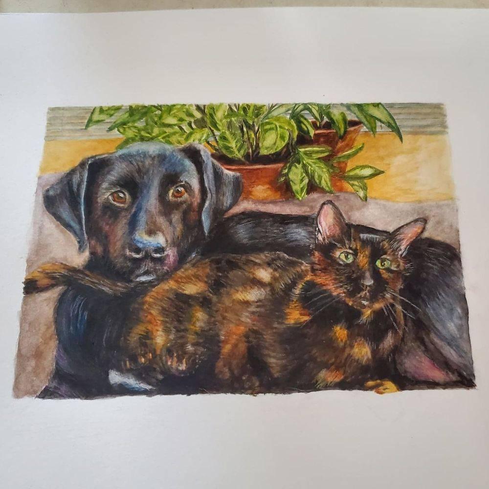 pets, pet portrait, cat, dog, watercolor