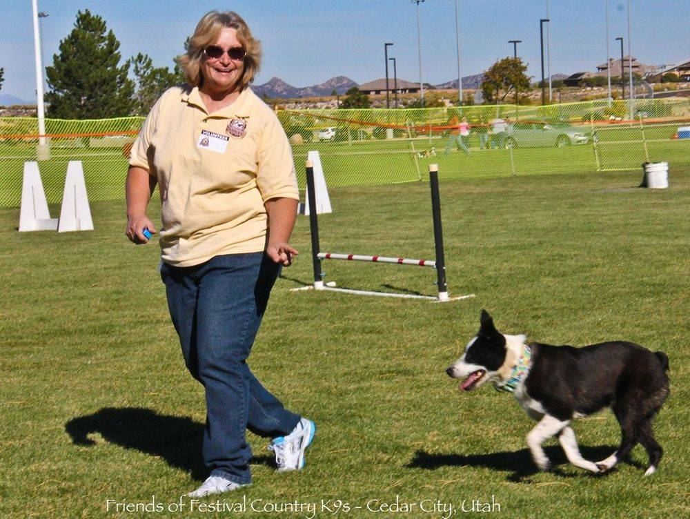 Gail Workman dog training education border collie