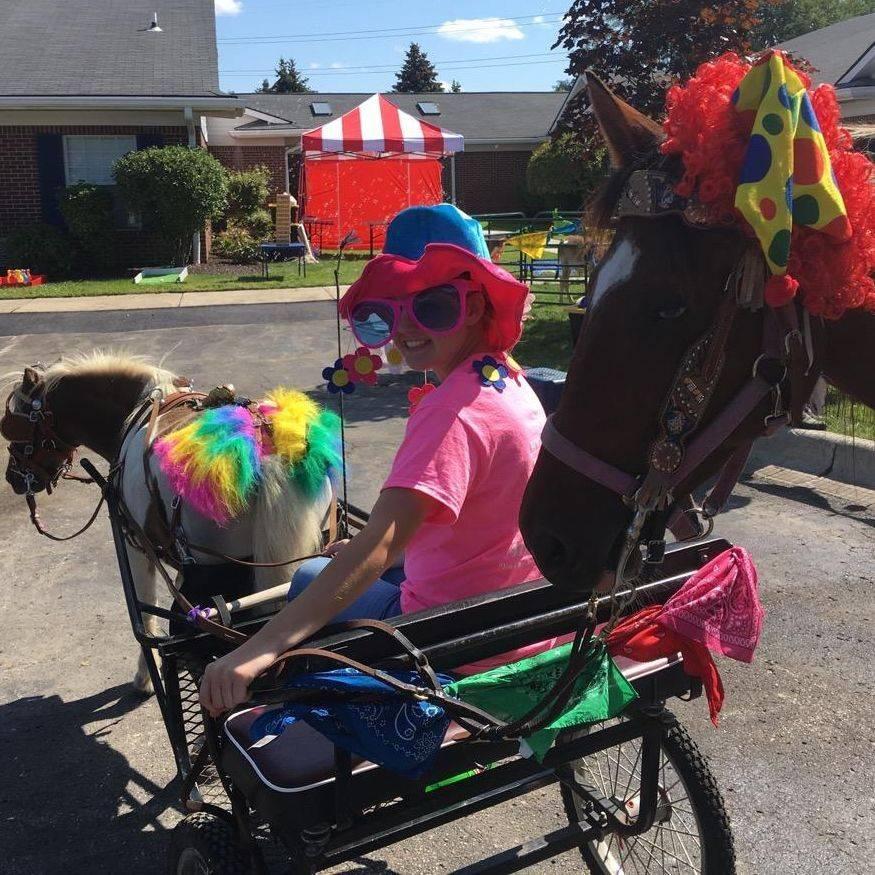 Pony cart rides