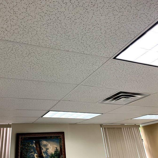 Office Halogen Lighting
