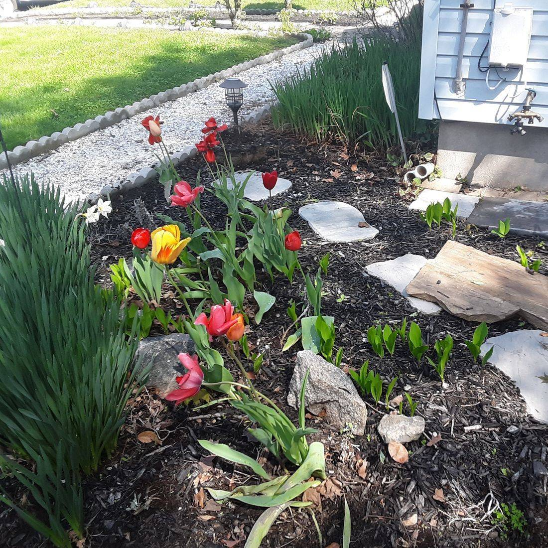 northeast Connecticut, lawncare, mowing, trimming, lawn maintenance, Labbes Lawncare Plus, weed whacking, edging, clean-up