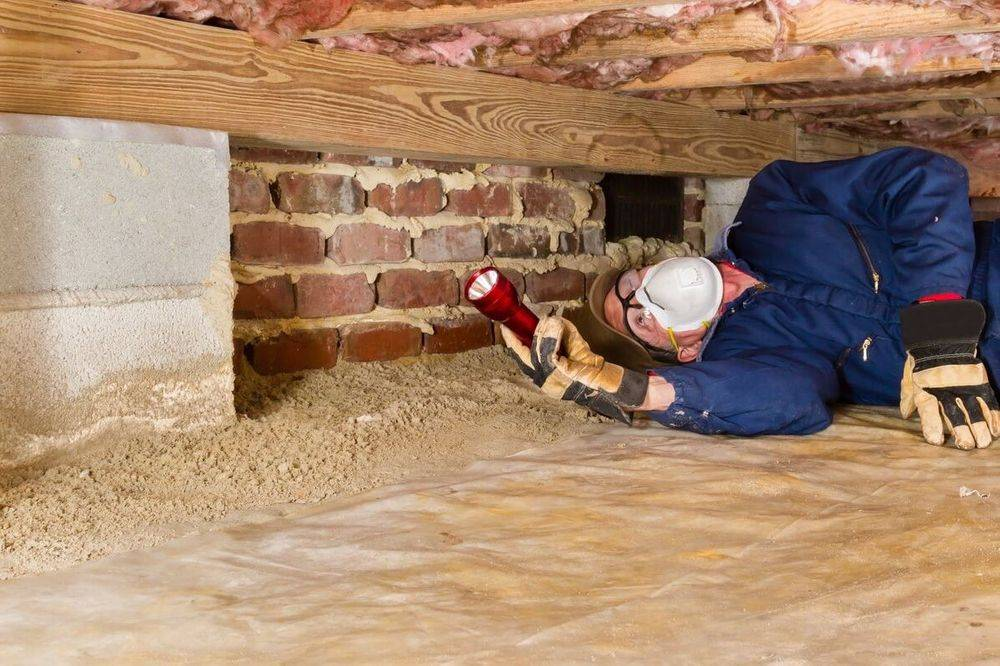 Termite inspections with your home home inspection in Dallas Fort Worth