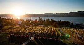 Lakeshore & East Kelowna Wine Tour