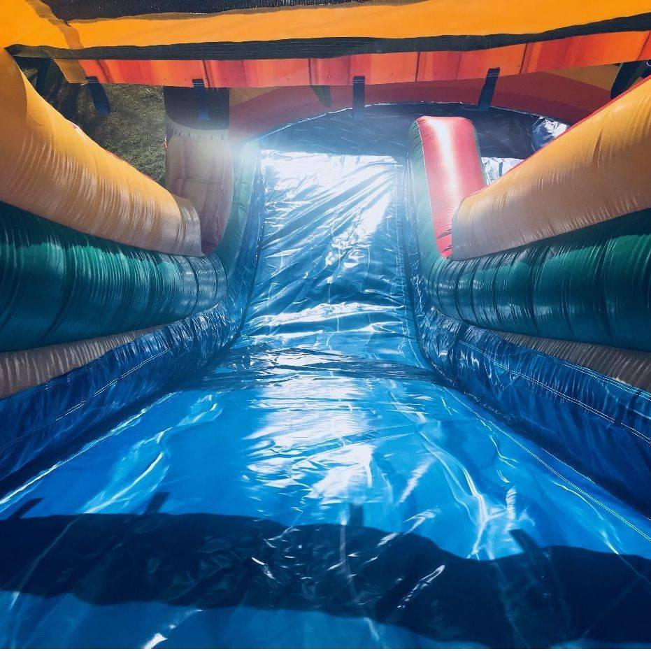 18ft dolphin waterslide with pool inflatable