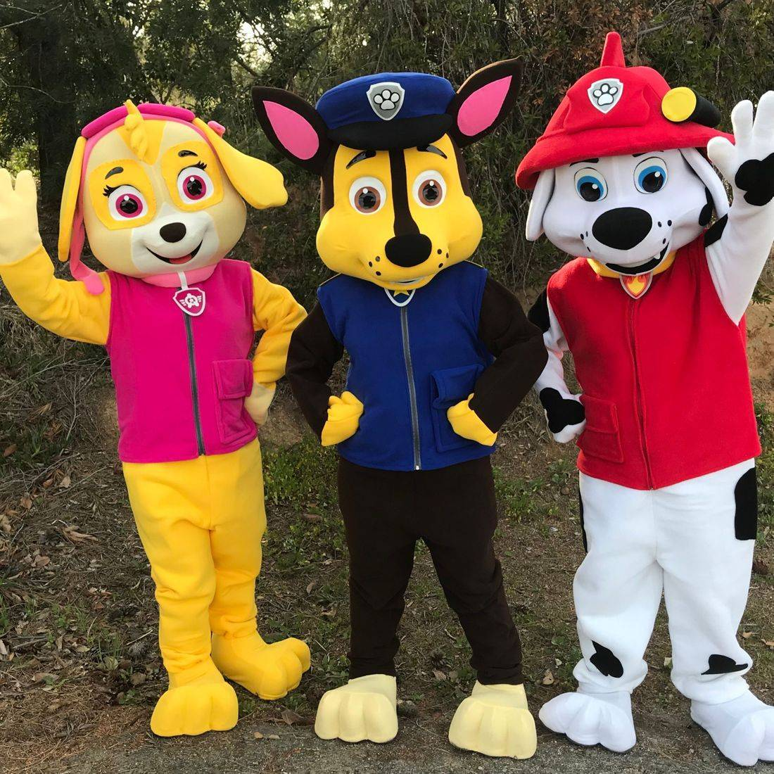 paw patrol, paw patroll,paw patrol party, paw patroll party, marshall,chase party, riverside,character,princess party, kid's party entertainment