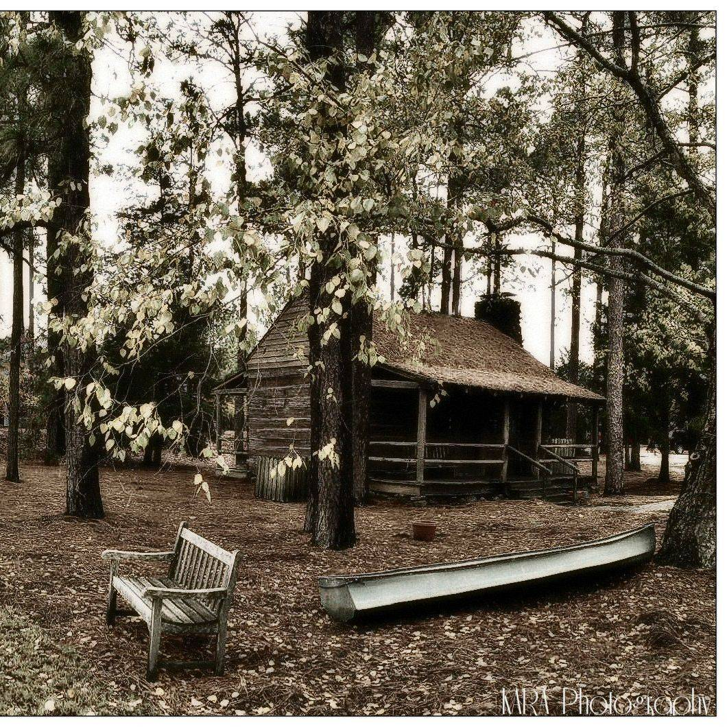 Autumn, Cabin, Cottage, Bench, Boat, Nature