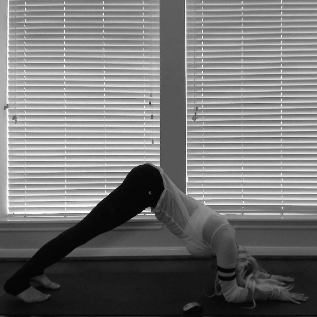 Dolphin Yoga Pose (Ardha Pincha Mayurasana)