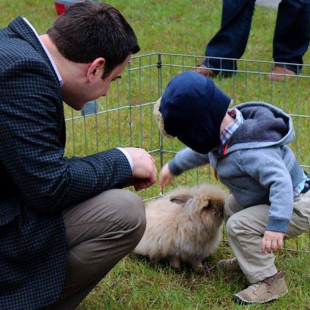 Father and son petting furry rabbit