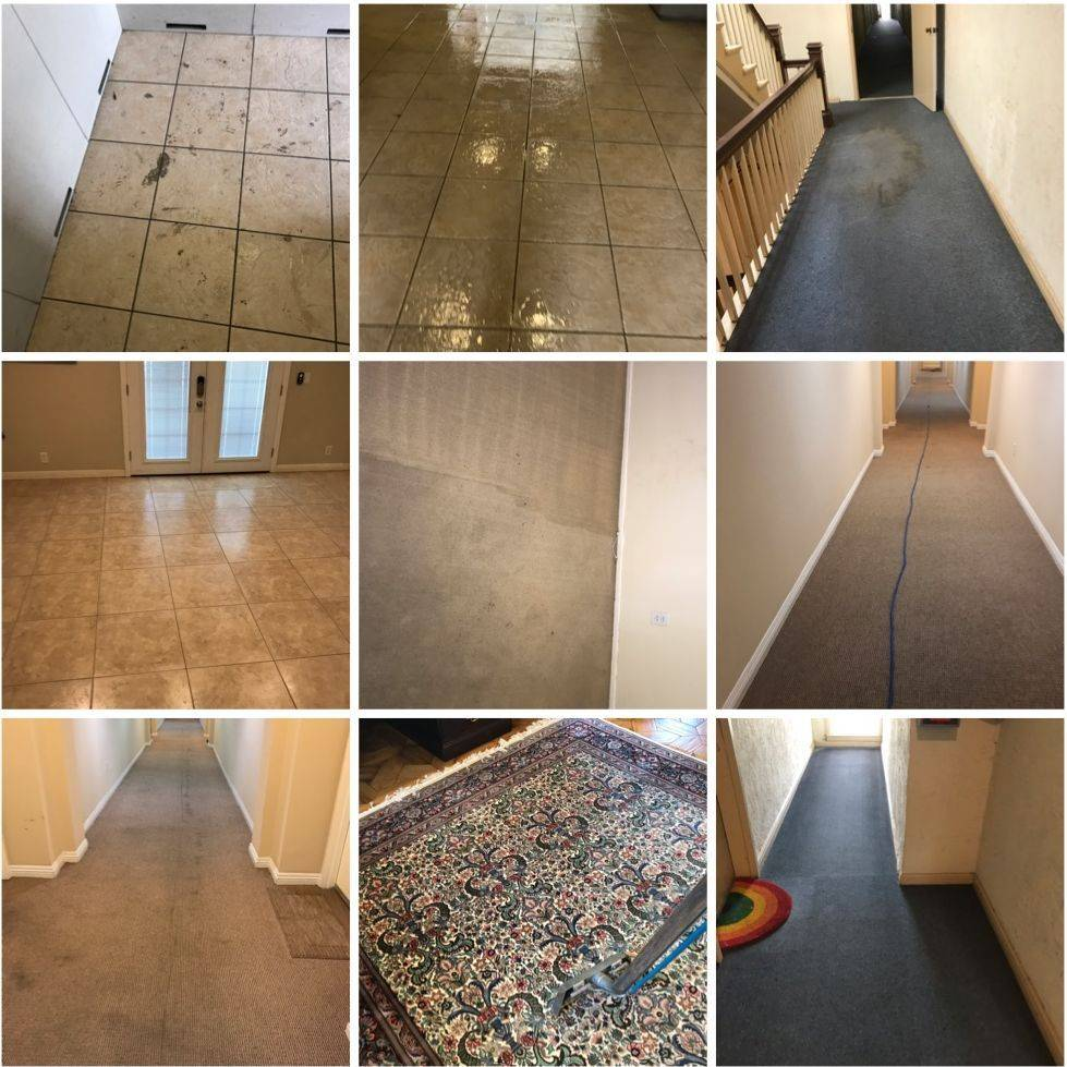 Carpet Hallway Deep Steam Cleaning and Tile Cleaning