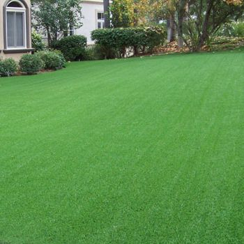 artificial turf installers gold coast