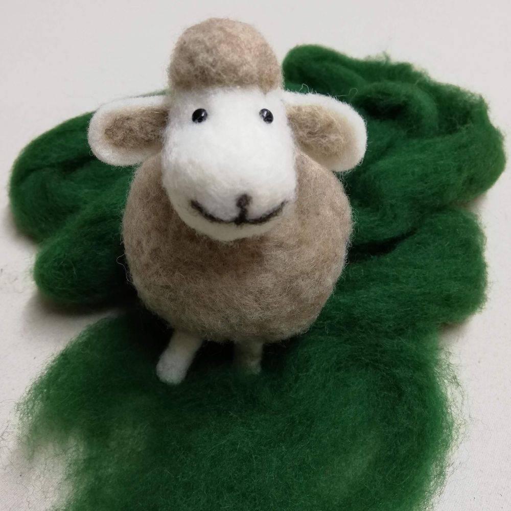 Felting Wool & Kits