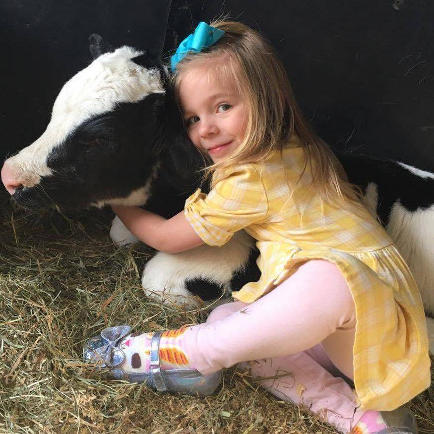 Little girl wearing a yellow dress hugging a calf