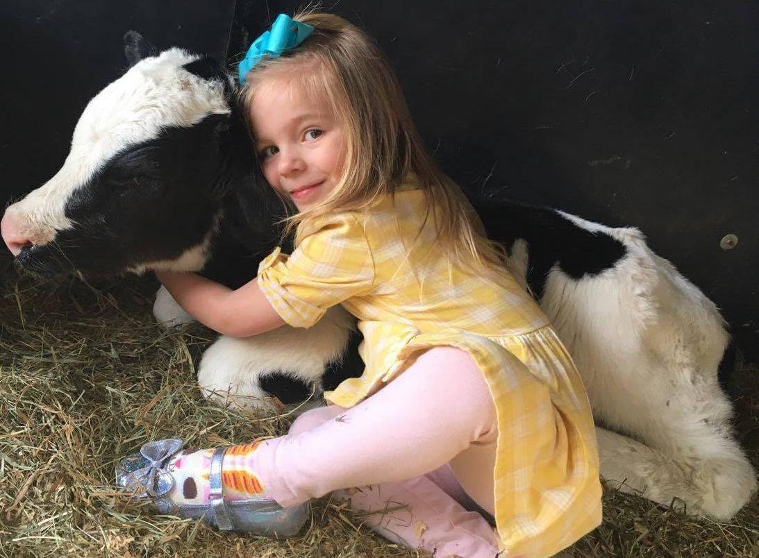 Little girl in yellow dress hugging a calf