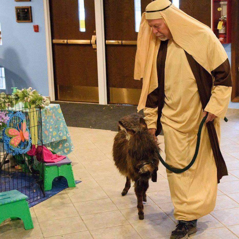 man wearing shepards costume leading a donkey