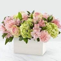 Send Flowers To Great Neck Virginia Beach
