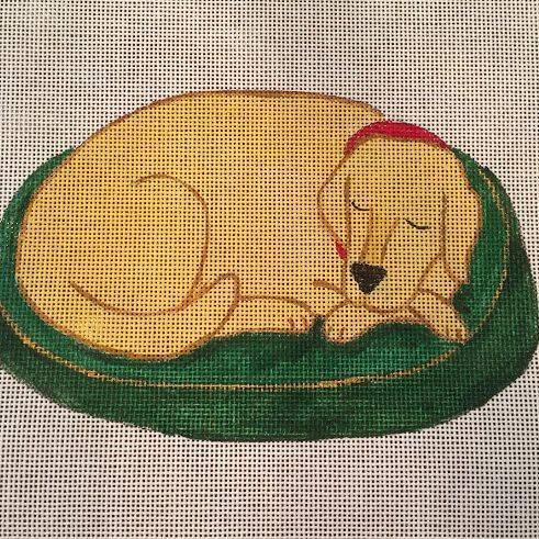 golden, lab, sleeping, dog