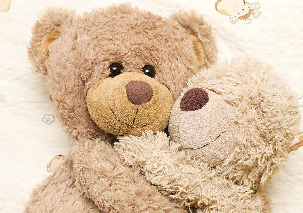 Teddy Bear Backdrop