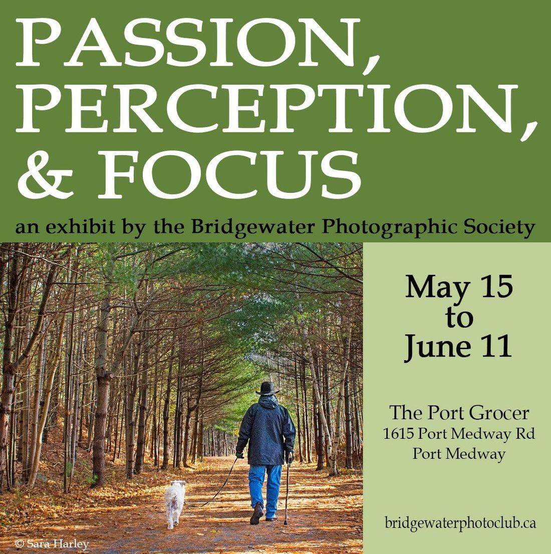 Passion, Perception, and Focus Exhibit, May 2018