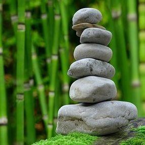 Wellness, Health, Quality of Life