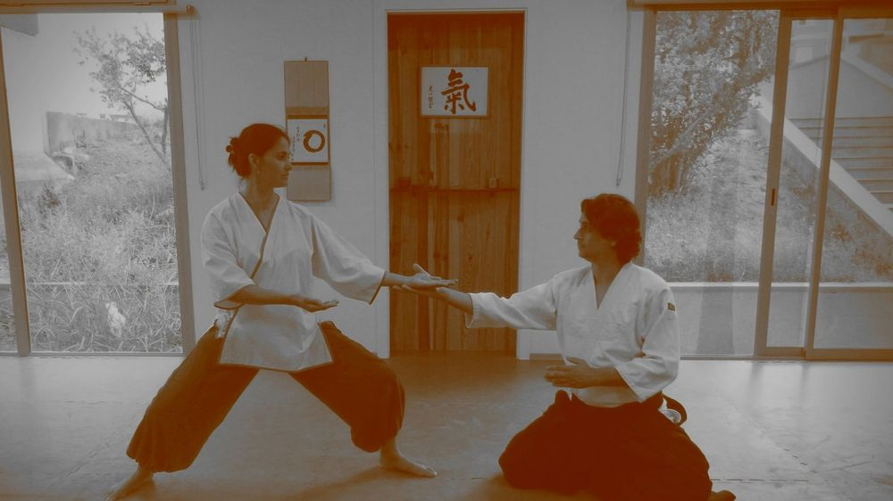 Aikido,Taichi,defensa personal,arts marcials infantil