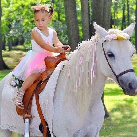 Unicorn back rides