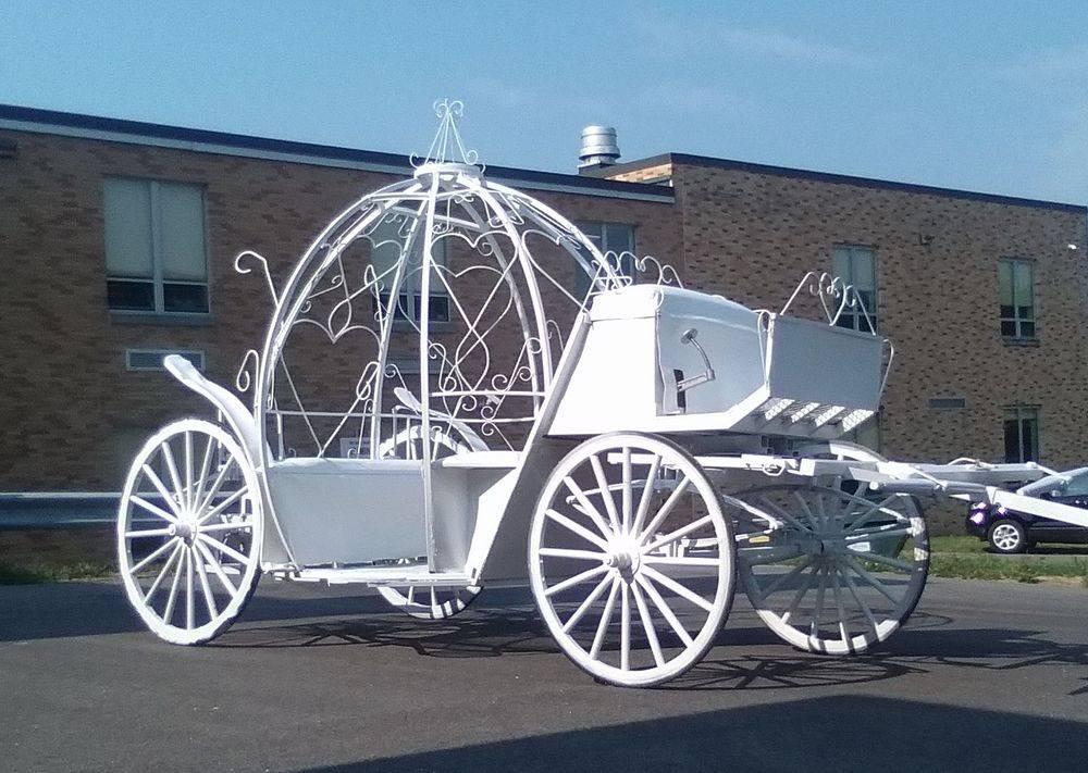Misty Lane Farms Cinderella Carriage