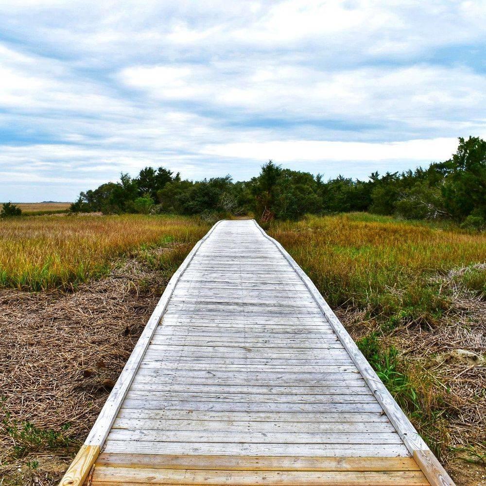 P Batson - Hermit's Trail