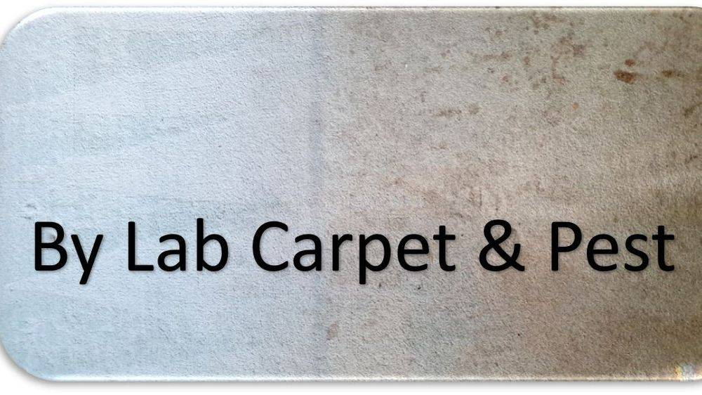 Carpet Cleaning great results