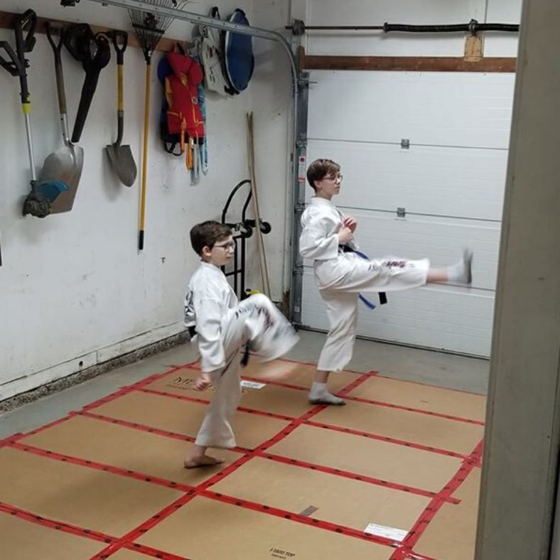 Online Virtual Karate Classes