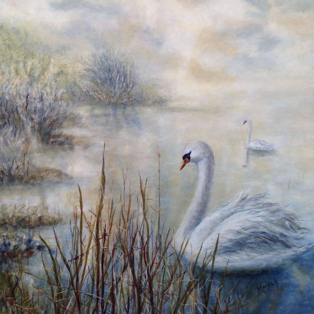 Swans on lake: 4ft x 3ft oil painting by Marcia Kuperberg