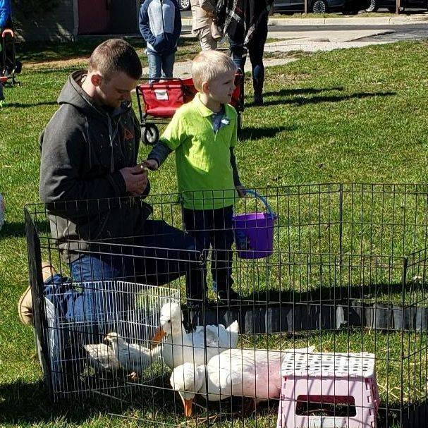 Father and son petting  duck