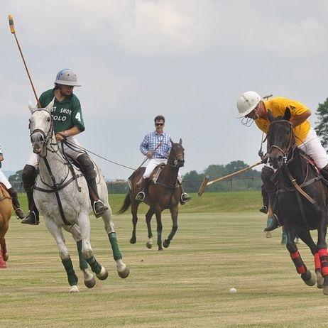 India Polo