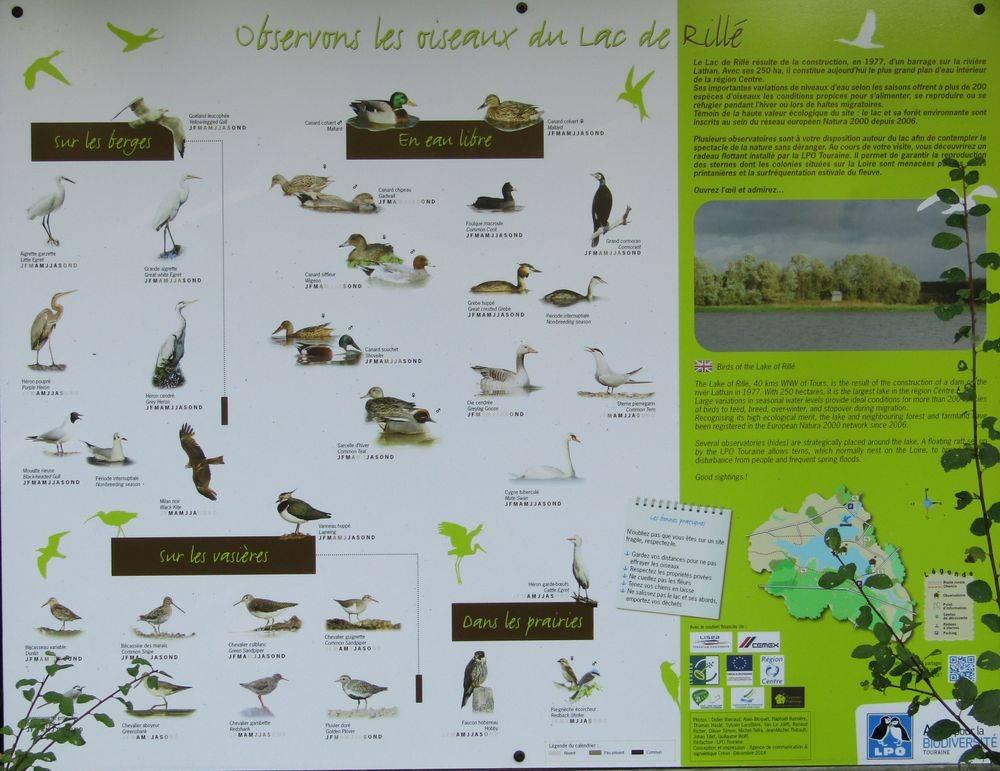 Gite nature du Tremblay en Touraine réserve ornithologique