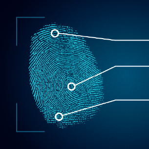 The Best Livescan Fingerprinting in Tampa Bay