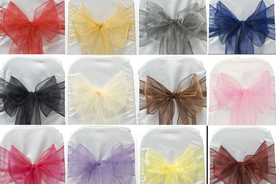 Organza Coloured Sash