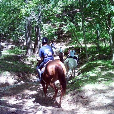 Potomac Horse Center Trail Rides