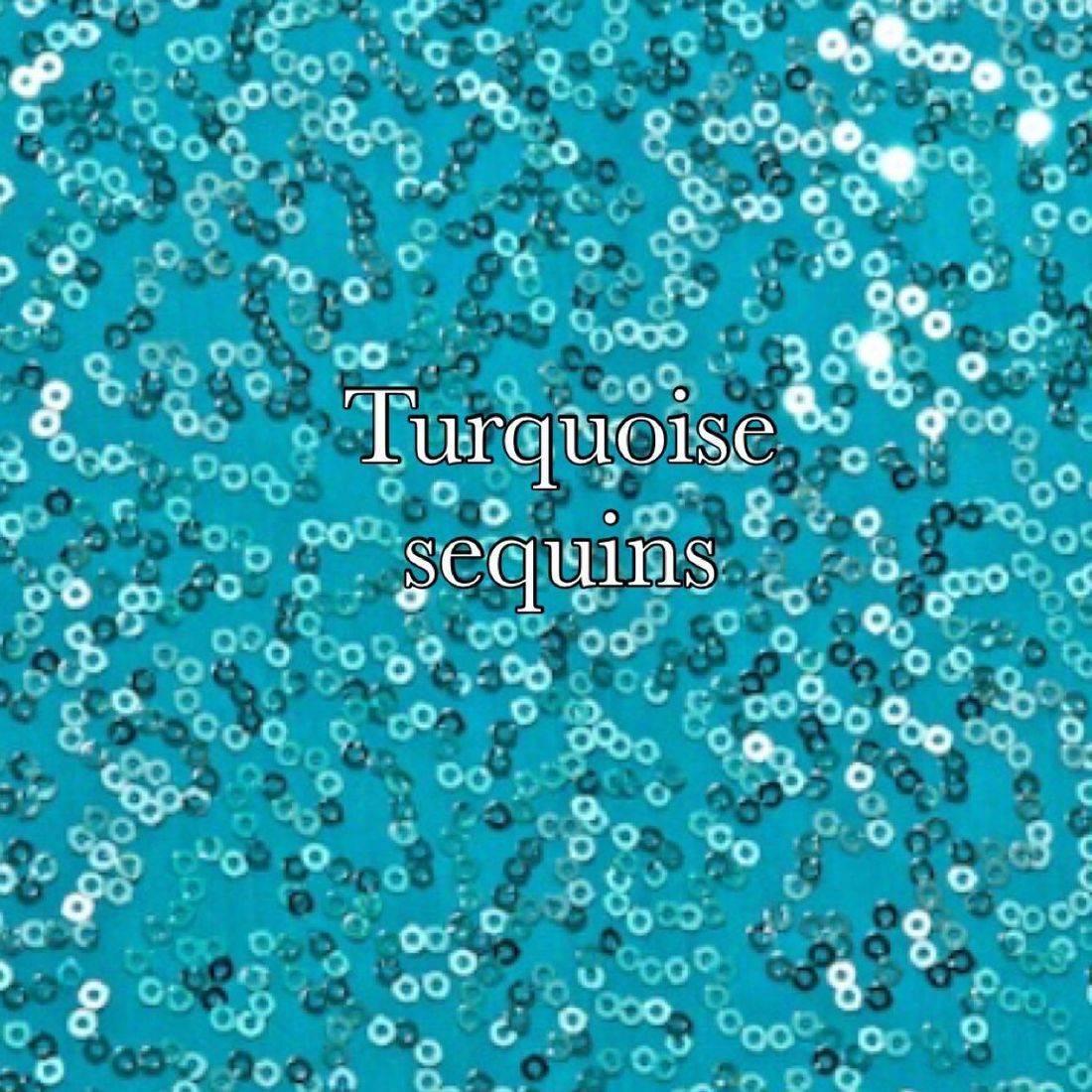 Turquoise sequin