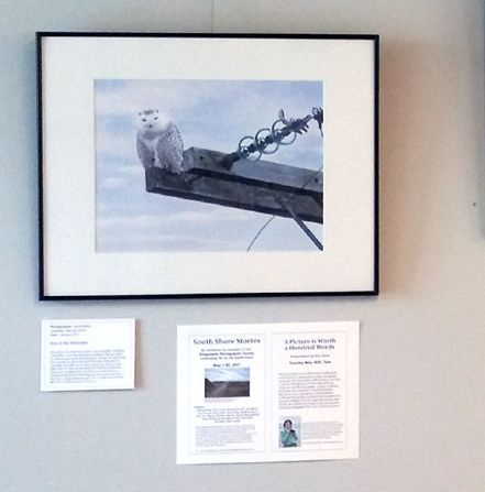South Shore Stories Exhibit, Bridgewater Library, May 2017