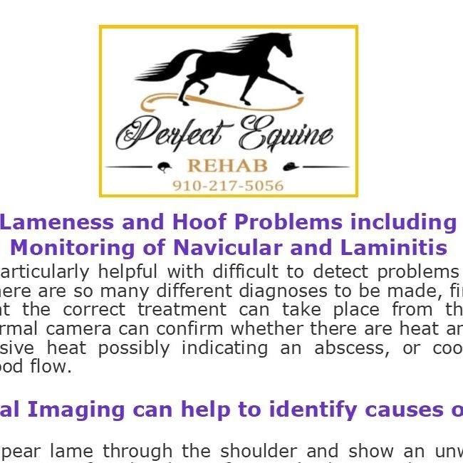 Lameness & Monitoring
