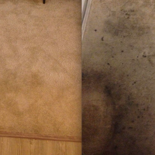 before - after Deep Steam Cleaning