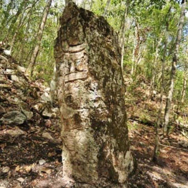 Les Mayas Nouvelles Découvertes