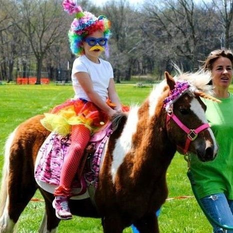 Small child sitting on pony