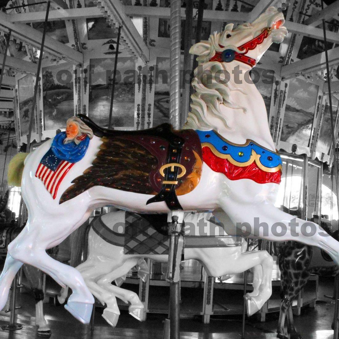photography, merry-go-round, carousel, horses, patriotic, amusement ride