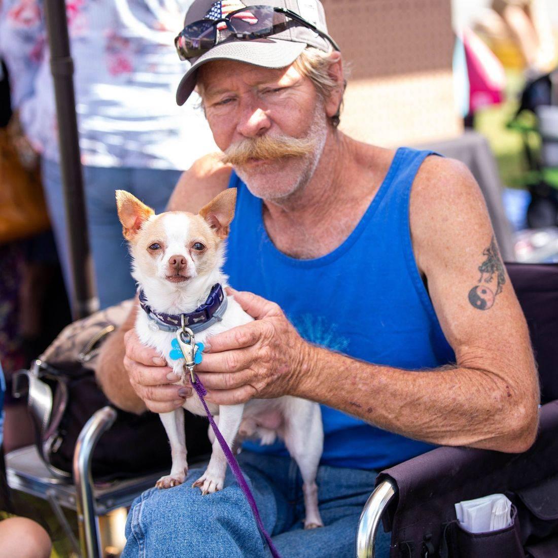 dog, mans best friend, puppy