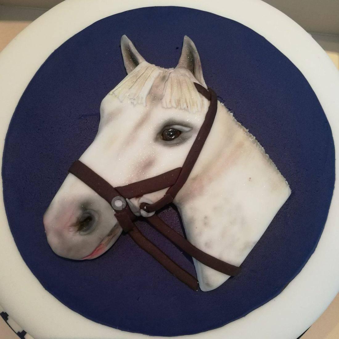 Horse head Birthday Cake
