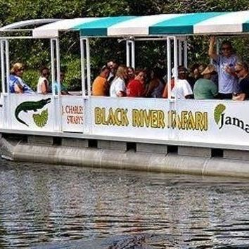 Black River Safari, St. Elizabeth, Jamaica